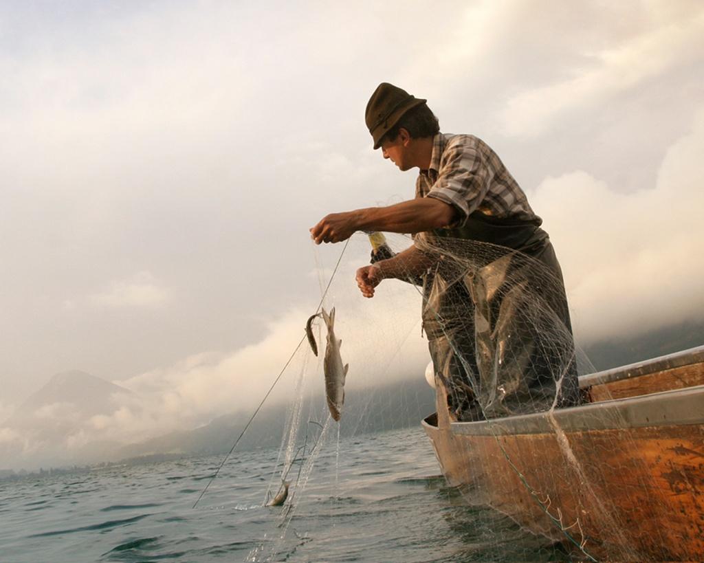 fischen-am-wolfgangsee